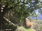 17 property for sale in moltrasio