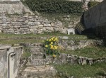 10 small garden bisbino